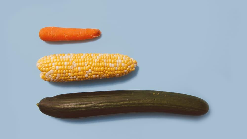 legumes representando se tamanho é documento